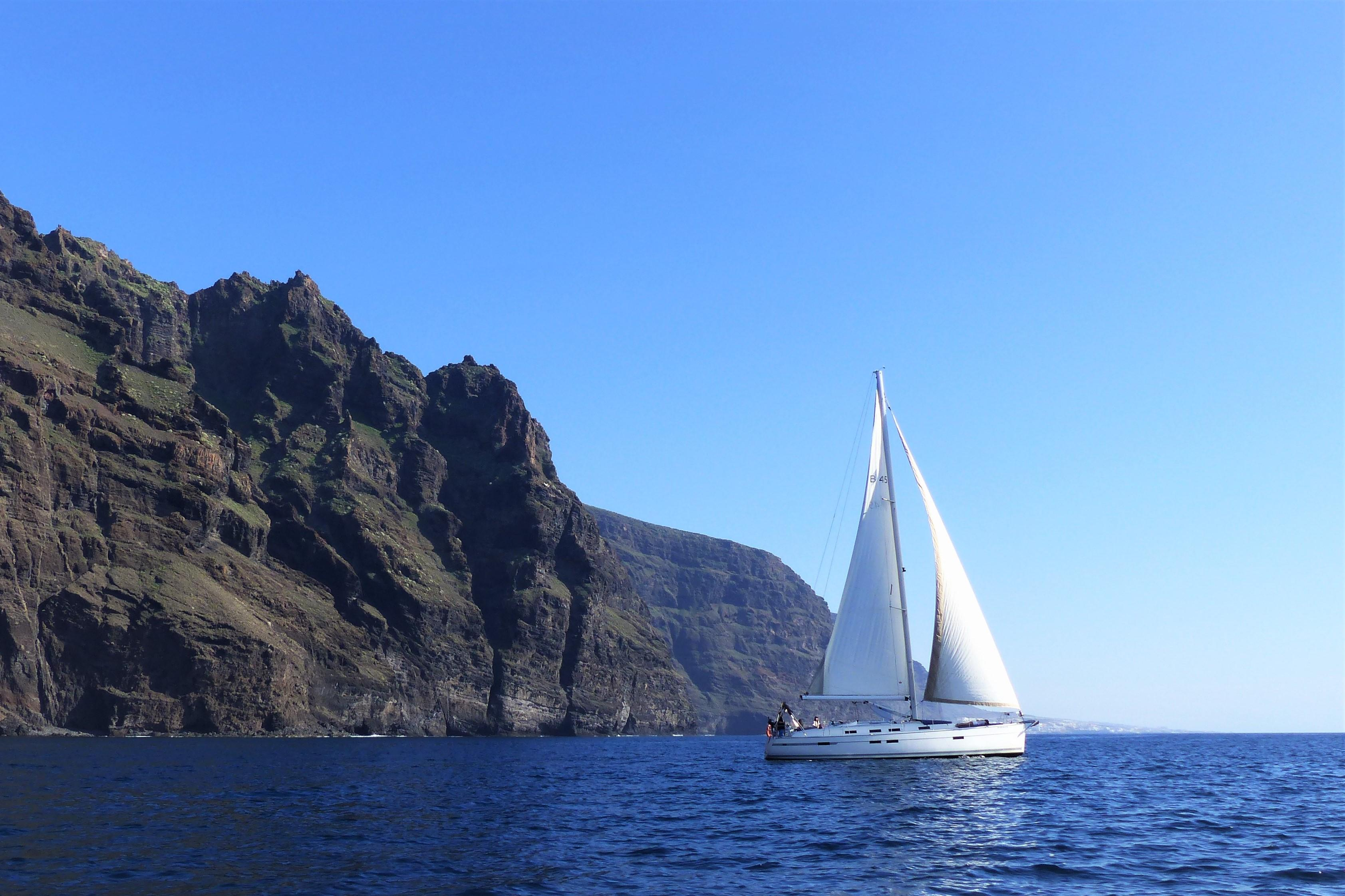 Whale Watching boat tour in Los Gigantes