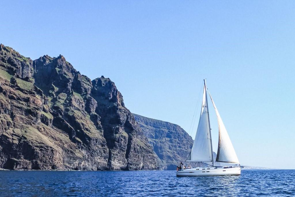 Private Whale watching in Los Gigantes